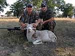 Father son guided ram hunt