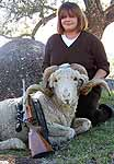 Hunting Exotic Rams at a ranch in the texas hill country