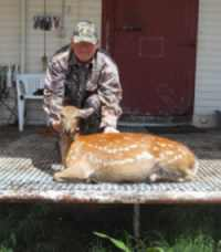 sika doe hunt affordable in Texas