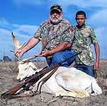 White fallow hunts in the texas hill country