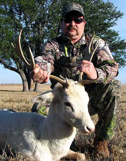 hunting white fallow bucks in the mason county
