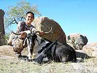 Hunting a Trophy Spanish Goat in the rocky hills of texas
