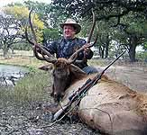 Trophy Elk Hunts in Central Texas at The Wildlife Ranch