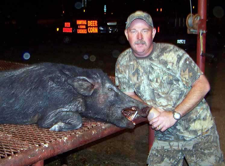 Trophy Boar Hunts at The Wildlife Ranch