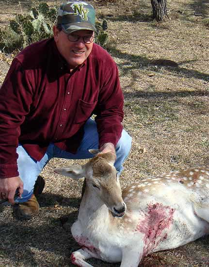 hunting fallow deer at the wildlife ranch
