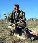 Fallow deer hunts in the rolling hills of texas