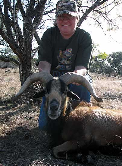 huntin a corsican ram at the wildlife ranch