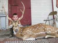 youth hunt for trophy axis bucks in Mason, Tx