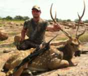 Axis Buck on rocks in the beautiful hill country mason, tx