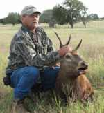 red stag shot at ranch in hill country