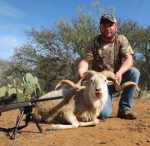 texas dall ram call for pricing!