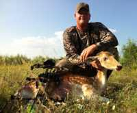 hill country fallow doe bow hunting at the wildlife ranch