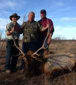 elk bull hunt mason texas