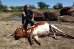 longhorn hunt mason texas