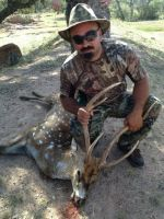 axis hunting mason texas
