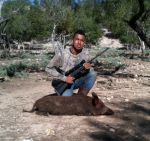 hog hunting hill country