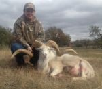 texas dall hill country hunting