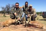 blackbuck hunt hill country