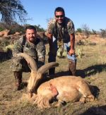aoudad hunting rocks great hunt