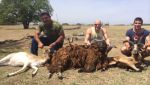 group hunt mason, tx