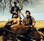 bison buffalo hill country hunt mason texas