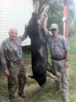 hog hunting call for details mason, tx