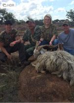 new zealand mountain goat Hunt For The Cure