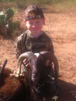 youth texas hunt for rams in hill country cactus