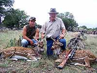 Managment Axis Hunts at the Wildlife Ranch in Mason Texas